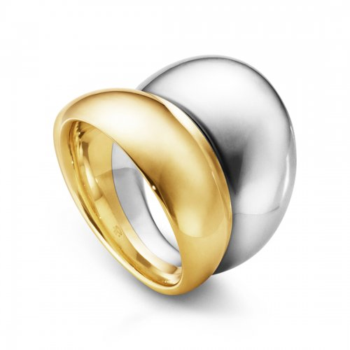 Curve Ring Silver/Guld